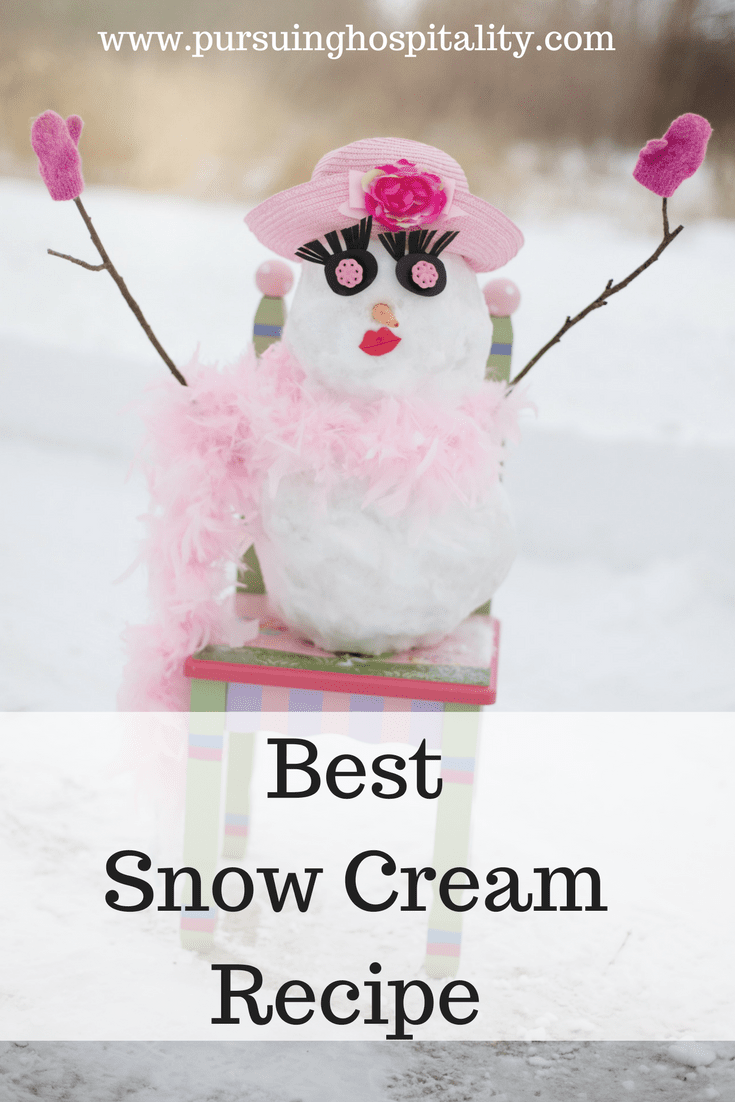 Best Snow Cream Recipe